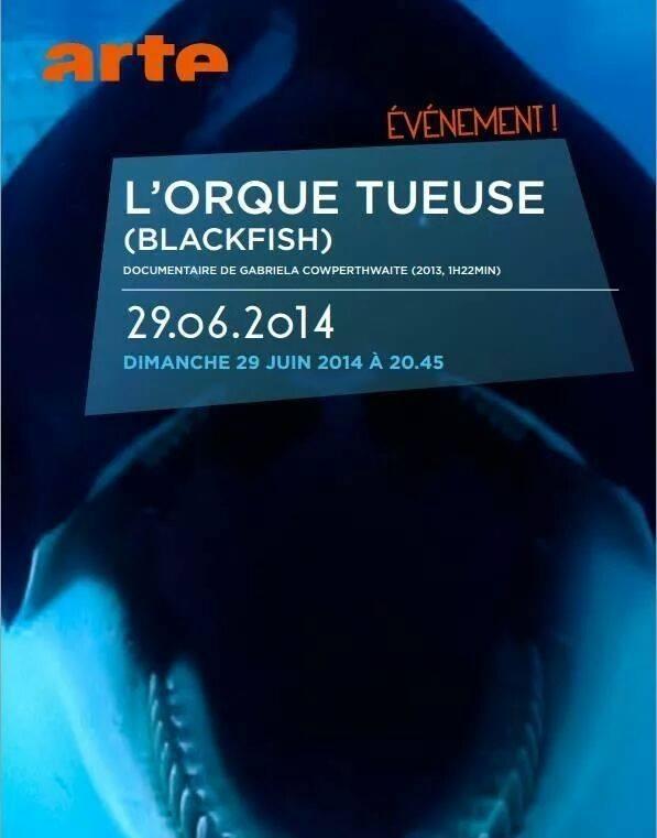 Blackfish sur Arte!